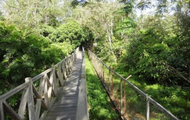 Hutang Lindung Sungai Wain