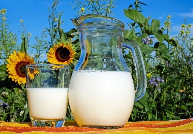 Susu Yang Bagus Untuk Ibu Hamil